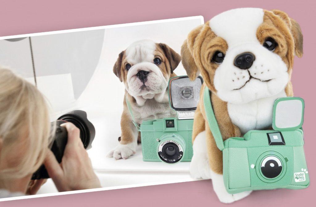 Studio Pets PupUp Store