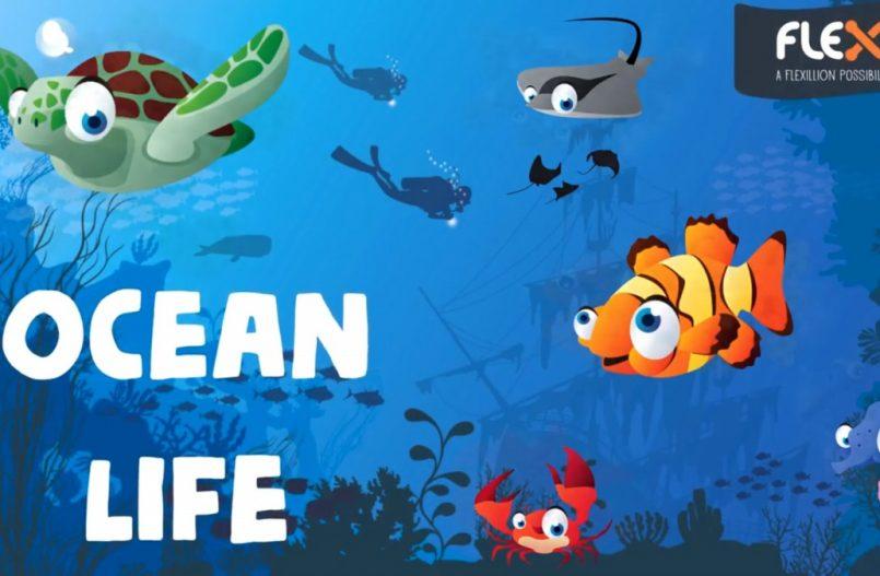 Flexo zeedierenset