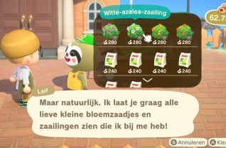Update Animal Crossing (7)