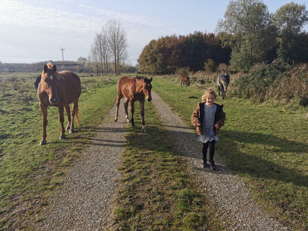 Geocaching in Nederland (3)