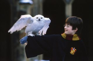 Harry Potter Speelgoed