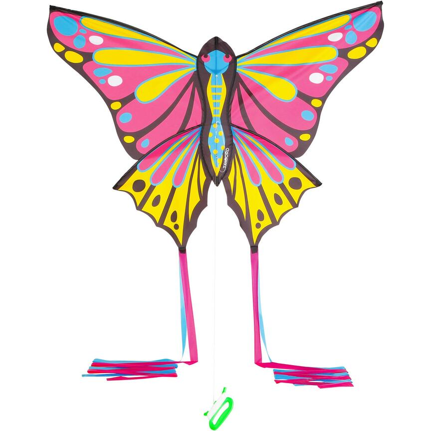 Vlinder vlieger